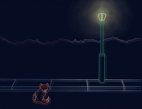 At night, a fox sits just off the pavement under a glowing street light.