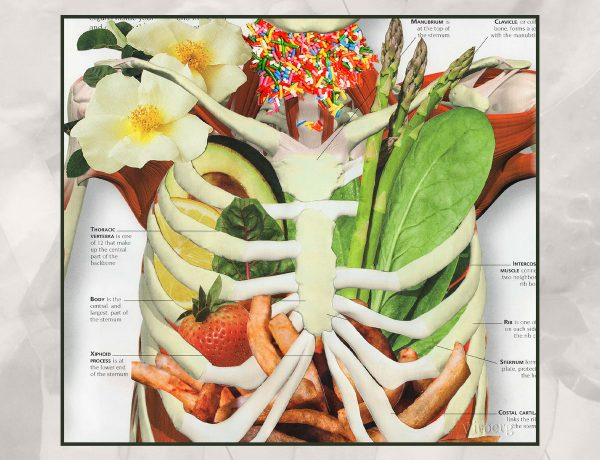 A collage of a human skeleton, visible from the ribcage to the top of the spine. The gaps between bones are filled with images of produce, french fries, flowers and rainbow sprinkles. Parts of the skeleton are labelled as in a diagram.